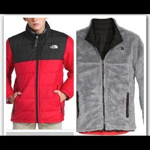 The North face reversible Mount Chimborazo jacket